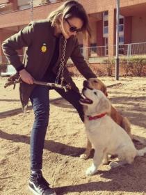 10 nombres para perros machos y hembra de parejas de cine