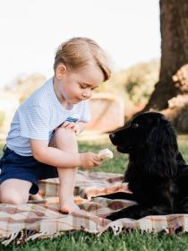 10 nombres de princesas reales para perros hembra