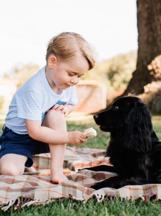 Nombres de princesas reales para perros