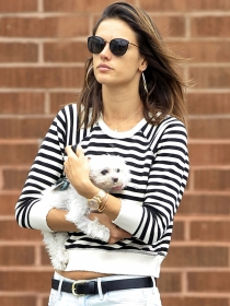 10 nombres para perros hembra inspirados en modelos