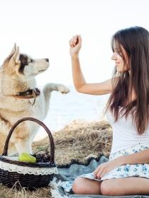 10 nombres de perros inspirados en comidas y alimentos