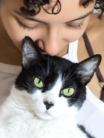 7 signos que demuestran que no necesitas pareja, sino un gato