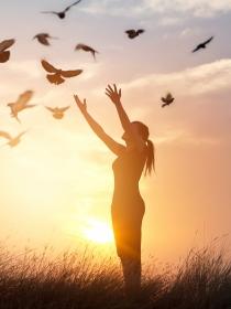 Soñar con no saber volar: no tengas miedo a desplegar las alas