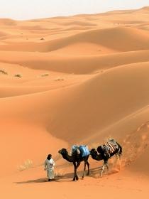 Cuidado al soñar con un desierto