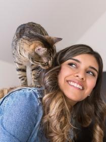 Soñar que tienes una nueva mascota: renueva tu vida social