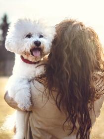 Soñar que se muere tu perro: tranquila, no va a hacerse realidad