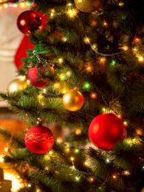 Soñar con un árbol de Navidad: ¿lista para disfrutar?