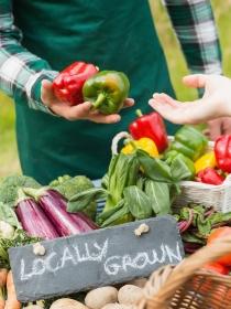 Alimentos que favorecen la fertilidad, tanto en mujeres como en hombres