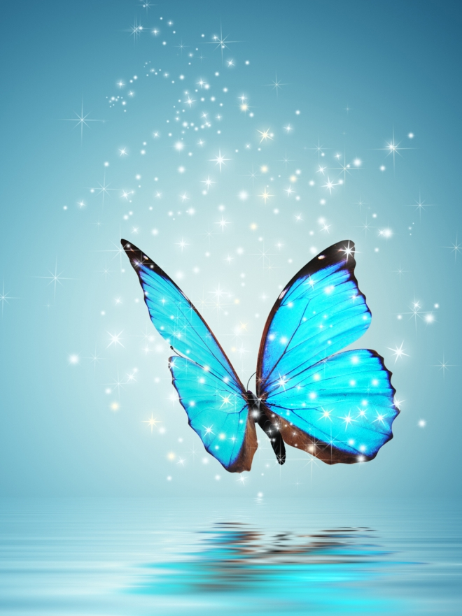 La Leyenda De La Mariposa Azul El Poder Está En Tus Manos