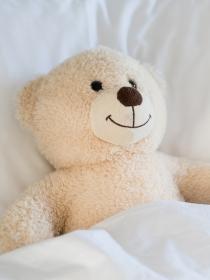 Soñar con un oso de peluche: recupera la ternura
