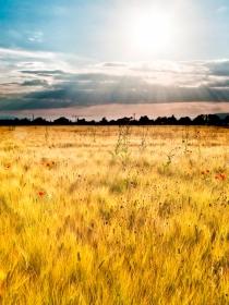 Soñar que se apaga el sol: recupera el resplandor