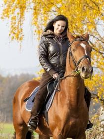 Qué significa soñar con caballos: significado de los sueños con animales