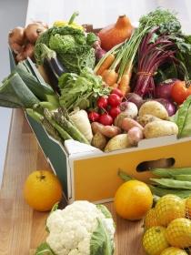 Dieta en la menstruación: alimentos que combaten el dolor menstrual