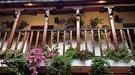 El frescor de los patios de Córdoba