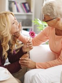 Carta de amor a una abuela: reforzando los vínculos familiares