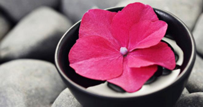 Descubre el Feng Shui para tu equilibrio emocional