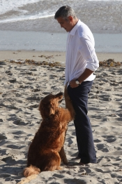 El lado más tierno de George Clooney con un perro