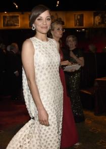 Oscars 2015: La elegancia de la bella Marion Cotillard