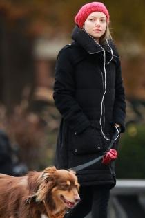 Mascotas famosos: Amanda Seyfried todo por su perro
