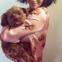 Nombres para perros: Butters, el perro famoso de Katy Perry
