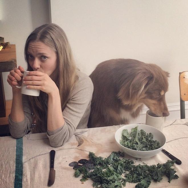 Nombres de perros famosos: Finn, el perro de Amanda Seyfried