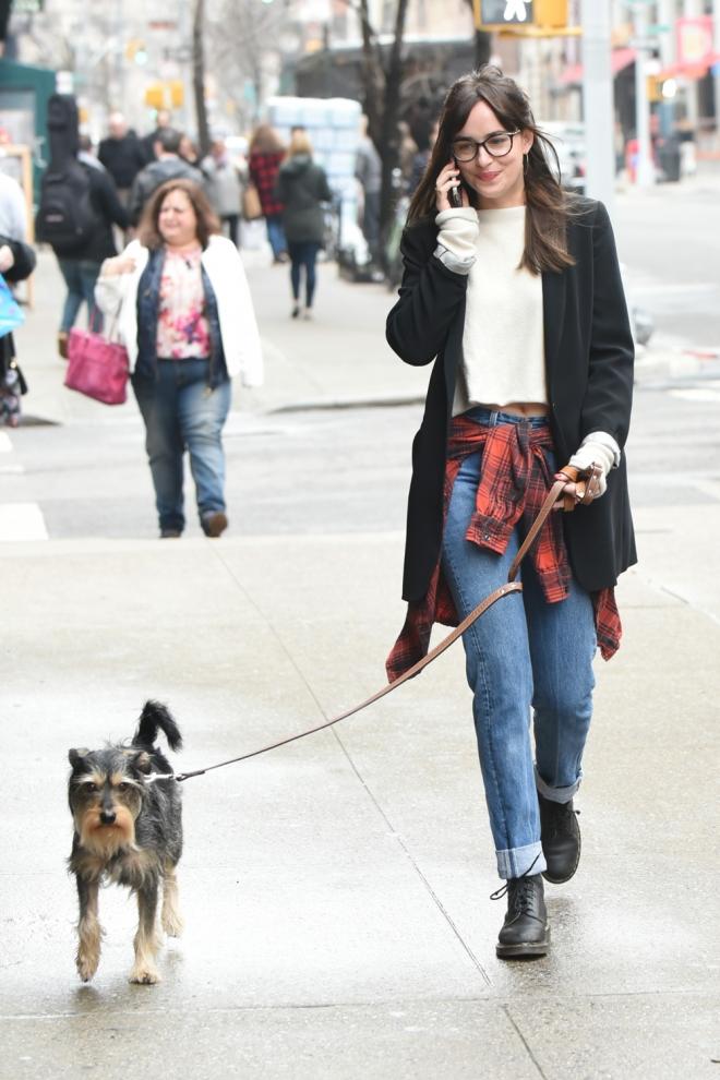 Perros de famosos: Zeppelin, el perro de Dakota Johnson