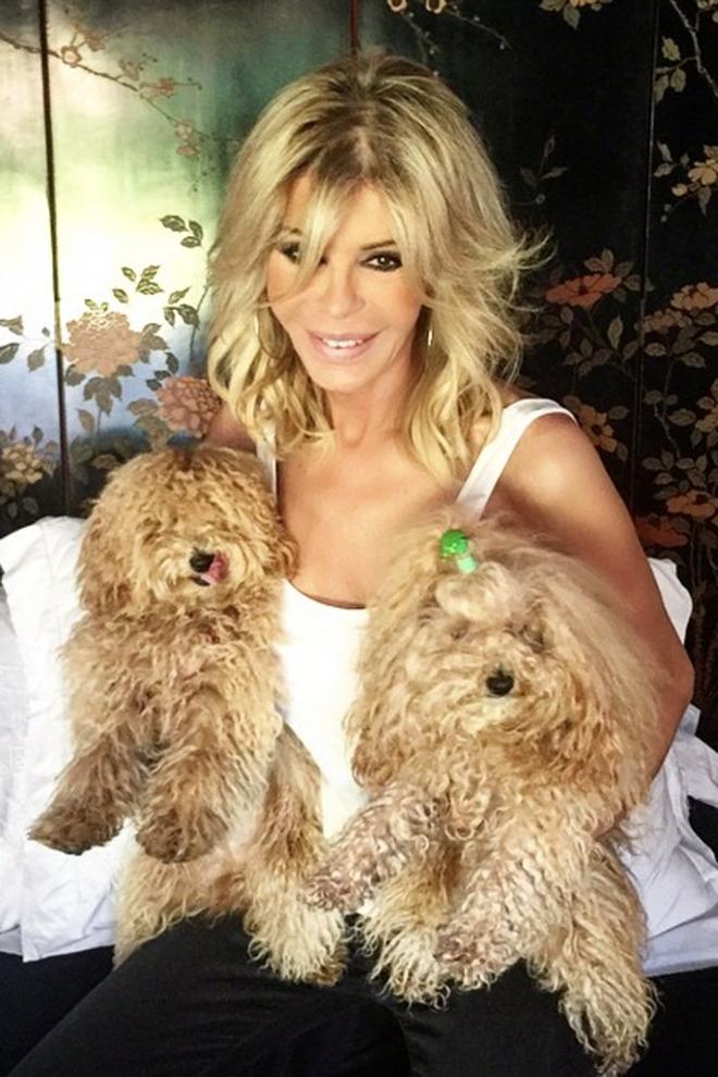 Perros de famosos: Joe y Hope, los perros de Bibiana Fernández