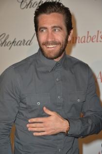 Jake Gyllenhaal, carrera de éxito