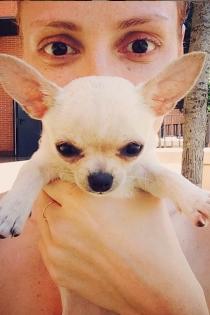 Perros de famosos: Sally, la nueva perra de Cristina Castaño