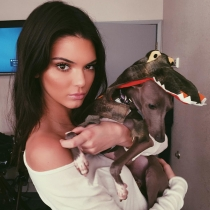 Perros de famosos: Kendall Jenner, junto a Norman