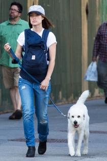 Perros de famosos: La mascota de Olivia Wilde