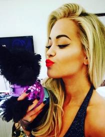 Perros de famosos: Cher, la perrita de Rita Ora
