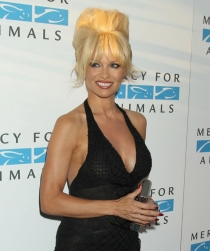 Famosas con vídeo erótico: Pamela Anderson