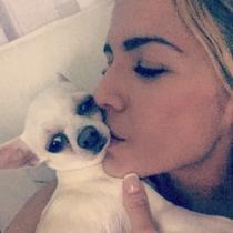 Perros de famosos: Chigu, el perrito de Tamara Gorro