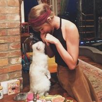 Taylor Swift es odiosa porque hasta sus gatos son fantásticos
