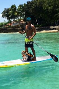 Lewis Hamilton, pasión por sus perros