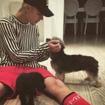 Perros de famosos: Los amigos de Justin Bieber