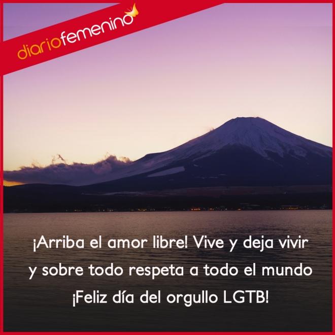 Frases De Amor Para El Dia Del Orgullo Lgtb Vive Y Deja Vivir