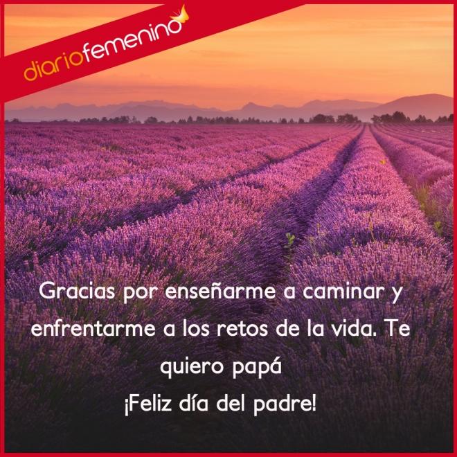 Frases De Amor Para El Dia Del Padre Gracias Por Todo Papa