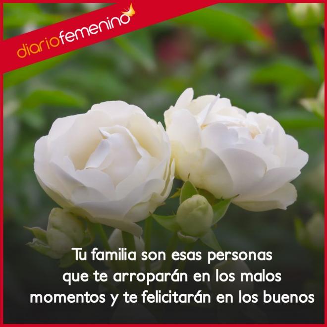 Frases De Amor Para Familiares En Lo Bueno Y En Lo Malo