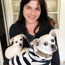 Perros de famosos: Ducky, la chihuahua de Selma Blair