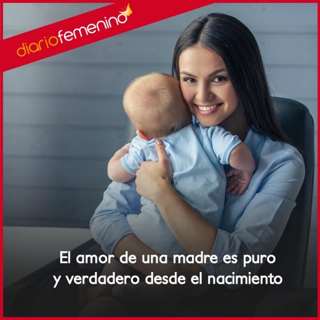 Frases De Amor Para Una Madre El Amor Mas Sincero Y Puro