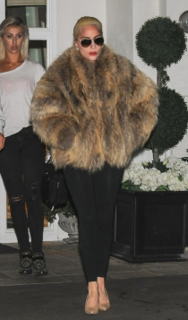 Lady Gaga, ¡ni pizca de frío!