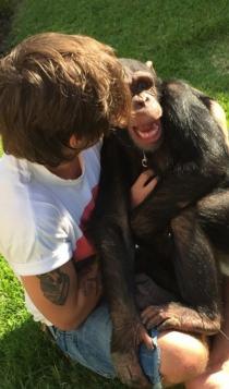 Louis Tomlinson, amante de los animales
