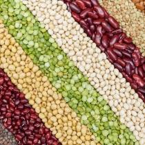 Alimentos con fibra: Lentejas
