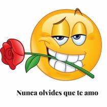 Frase de amor con emoticono: Declaración de amor
