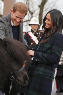 A Meghan Markle y al príncipe Harry les gustan mucho los animales