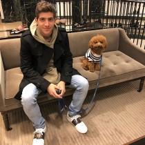 Baloo es el Poodle toy del futbolista Sergi Roberto