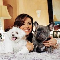 Los adorables perros de Eva Longoria se llaman Jinxy y Popeye
