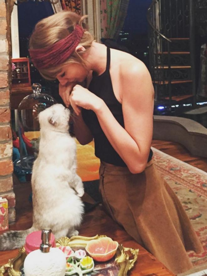 Por qué Olivia, la gata de Taylor Swift, dominará el mundo
